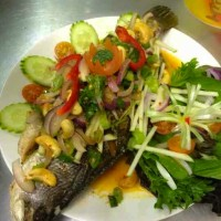 Fish In Garden